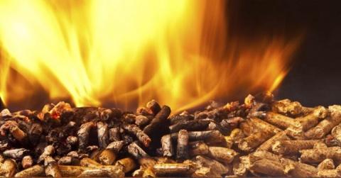 De biomassa